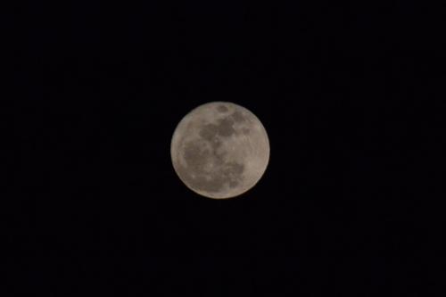 Moon 3/19